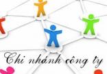 Điều chỉnh giấy phép Chi nhánh công ty nước ngoài tại Việt Nam